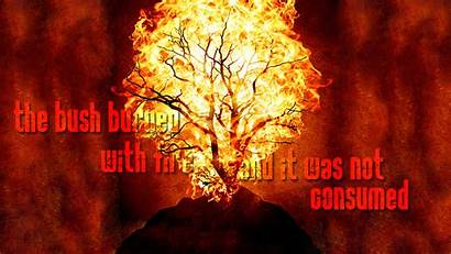 Fire Christian Holy Bush Consumed Wallpapers Lord