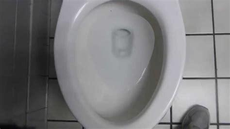 mansfield quantum pressure assist toilet flush youtube