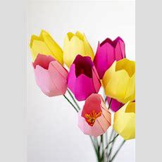Papier Blumen Basteln Einfache Tulpen (mit Vorlage