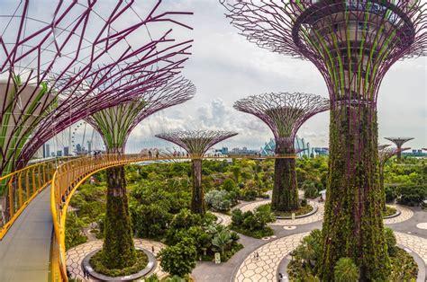 gardens by the bay garden garffiti part 3 gardens by the bay singapore