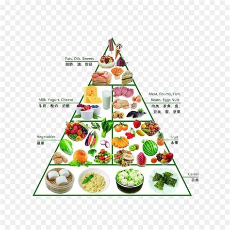 dietary supplement food pyramid nutrition healthy diet