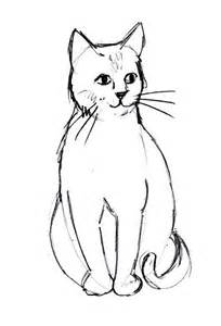 cat sketches cat drawings clipart best