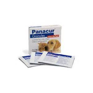 fenbendazole for cats panacur granules for cats dogs worm treatment