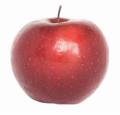 Apple Rome Inc