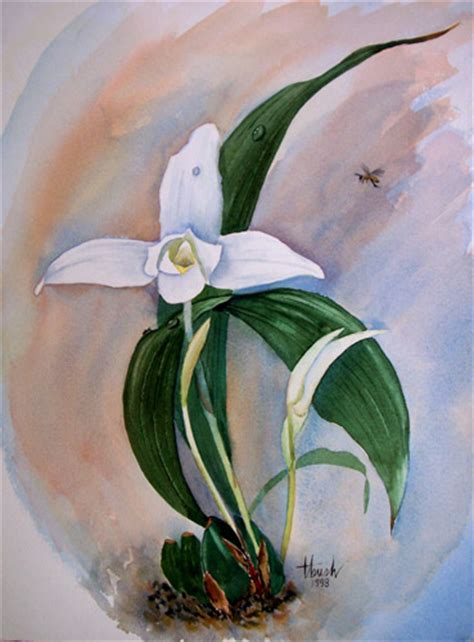 guatemala  watercolor
