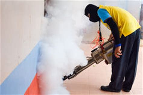 karte der dengue fieber verbreitung stock abbildung bild