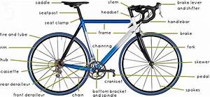 Women U0026 39 S Bike  A Buyer U0026 39 S Guide To Find What You Need