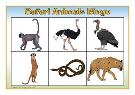 safari animals bingo sb sparklebox