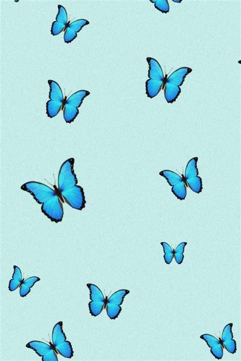 aesthetic iphone wallpaper blue butterfly wallpaper