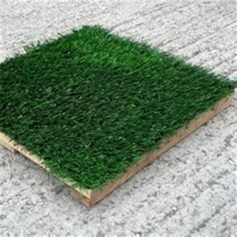 1000 images about artificial grass on grasses