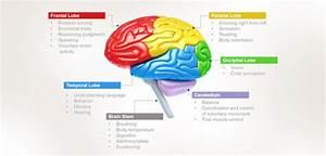 Neuroptimal Brain Training Scarborough