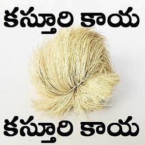 Large Size Kasturi Kaya Will Overcome Poverty Avoid All