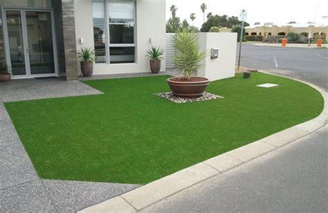 gallery koala grass