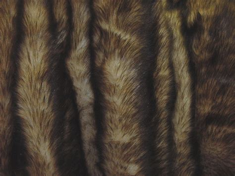 Lion Mane Fake Fur Faux Fur Fabric By The Yard Grey Paint Blue Curtains Contemporary Curtain Fabrics Uk How To Put Up Rods Over Blinds Curved Shower Rod Ideas Clawfoot Tub Mildew On Meat Synonyms Bay Window Lowes