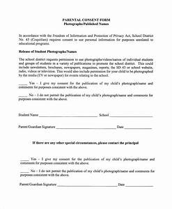 photography permission form template - 10 photography consent forms sample templates