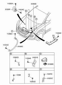 2015 Hyundai Santa Fe Engine Diagram : 91850 b8420 genuine hyundai wiring assembly battery ~ A.2002-acura-tl-radio.info Haus und Dekorationen