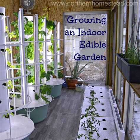 growing  indoor edible garden video northern homestead