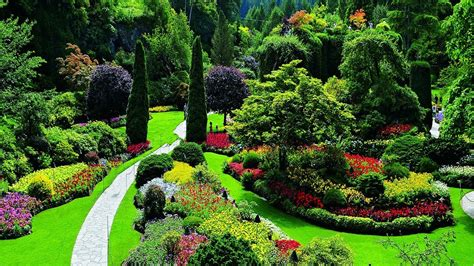 Gardens Bc - 4k hdr beautiful flower garden in canada the