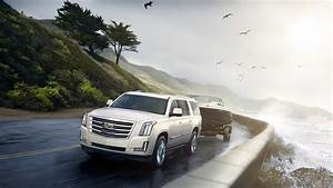 White Cadillac Escalade Wallpapers Hd Download Hd White