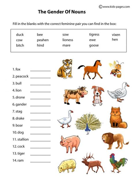 nouns gender animals worksheet