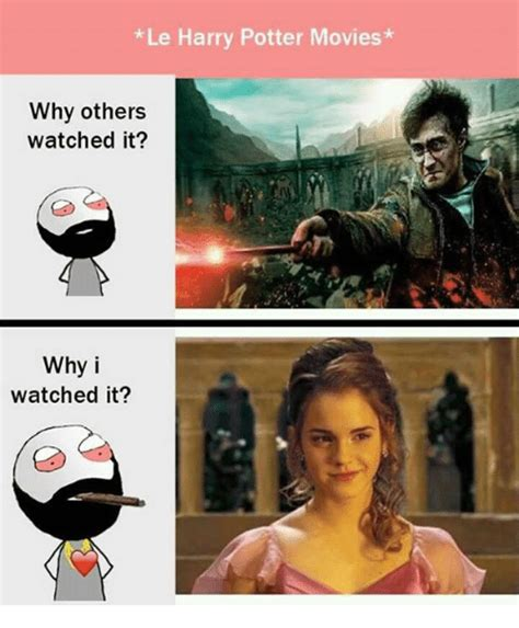 25+ Best Memes About Harry Potter Movie