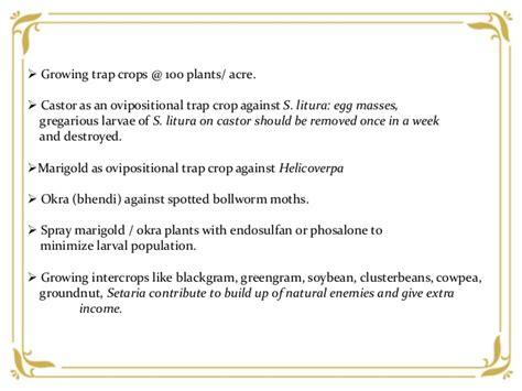 integrated pest management practices  cotton