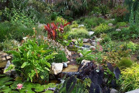botanical gardens encinitas san diego botanic garden letsgoseeit