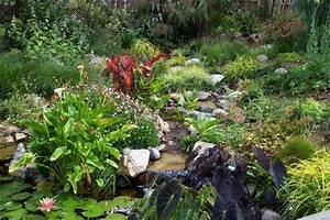 San diego botanic garden letsgoseeitcom for Quail botanical gardens