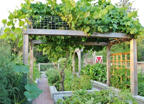 18+ Garden Trellis Designs, Ideas  Design Trends