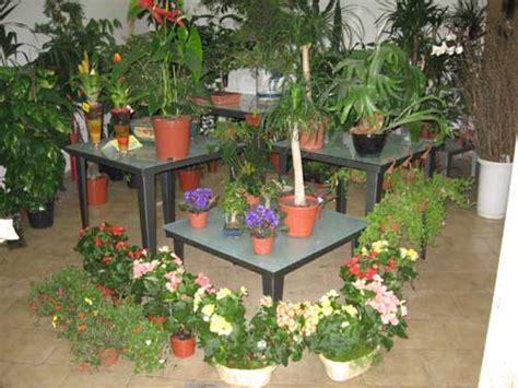 garden fiori e piante garden piante e fiori servizi funebri