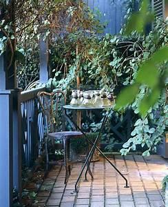 Des Plantes Grimpantes Pour Balcon Et Terrasse