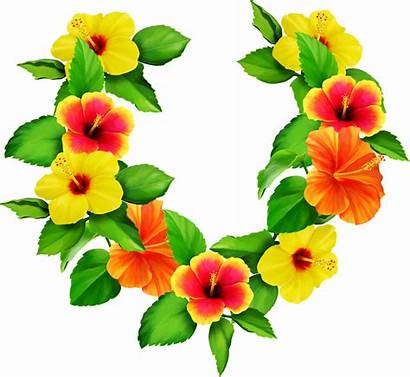 Wreath Hibiscus Flower Clipart Transparent Garland Clip