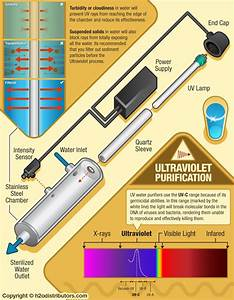 How Ultraviolet Sterilization Works