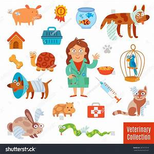 Veterinary Clinic Pet Vet Set Medical Stock Vector ...