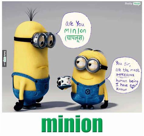 minion meaning  hindi minion meaning  english minion english  hindi meaning