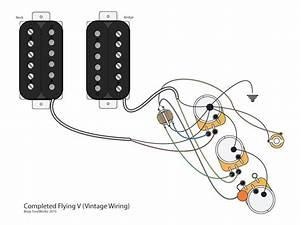 Epiphone Korina Explorer Wiring Diagram
