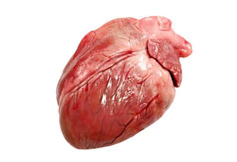 cuisiner le coeur de boeuf coeur de porc achat en ligne abats de porc