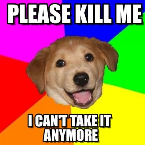 Kill Me Meme - kill me please dog www pixshark com images galleries with a bite
