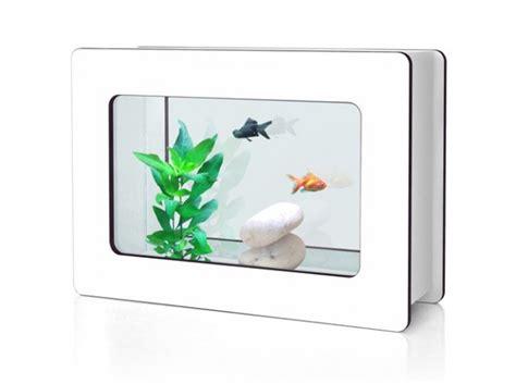 petit aquarium pour combattant aquarium combattant jardiland poisson naturel