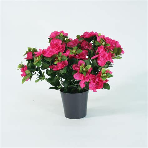 entretien azalee en pot azal 233 e artificielle en pot 35cm plantes fleuries artificielles l 233 t 233 indien