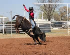 Kids Bull Riding