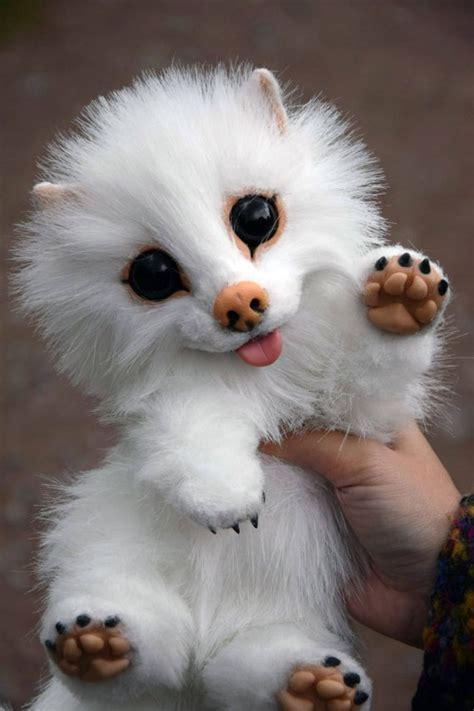 white pomeranian puppy dog