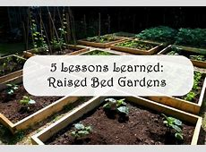 5 Lessons Learned About Raised Bed Gardens Yard Ideas