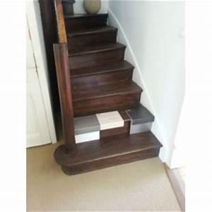 Rénovation Escalier Par Recouvrement : recouvrement escalier bois d cor ardoise 74410 saint jorioz ~ Dailycaller-alerts.com Idées de Décoration