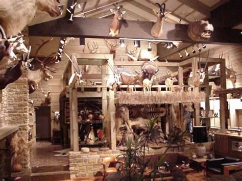 Safari Decorating Ideas For Living Room by 30 Best Images About Hunting Cabin Decor Ideas On