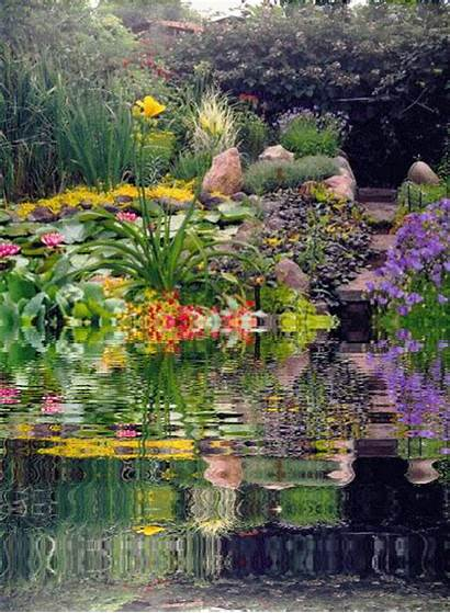 Garden Gardens God Gifs Gracious Flowers Creator