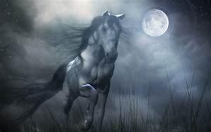 dustfingerlover images Fantasy Horse HD wallpaper and ...