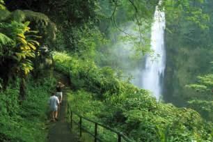 Waterfall On the Big Island Hawaii