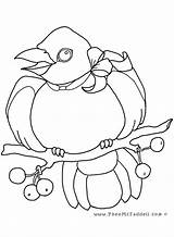 Crow Coloring Pages Diana Princess Cartoon Pheemcfaddell Halloween Colouring Getdrawings Getcolorings sketch template