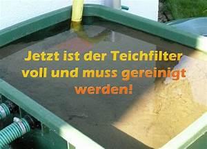 Teichfilter Selber Bauen Filtermaterial : teichfilter reinigen und pflegen mit anleitung ~ Michelbontemps.com Haus und Dekorationen